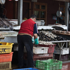 """Living the """"Real Experience with Locals""""  Walking into the Local Markets & Neighborhood  - Chile"""