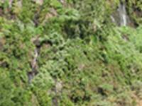 Marcos y Cordero springs hiking tour
