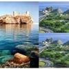 Mystic Muscat - Muscat City Tour (Half-Day)