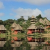 NWC Amazon Tour - Yasuní, Ecuador (4 days / 3 nights)