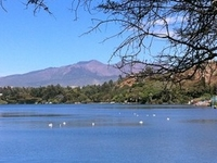 ONE OR TWO DAYS FROM ADDIS ABABA; BISHOFTU CRATER LAKES