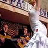 Patio Sevillano flamenco show