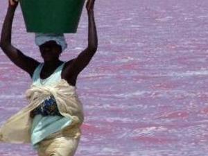 Pink Lake Photos