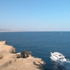 Red Sea Discovery Full Day Boat Trip