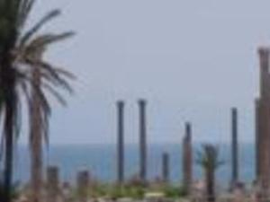 Sidon, Tyre, Echmoun Full Day Photos