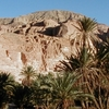 Sinai Uncovered - 2 day camel & jeep desert safari
