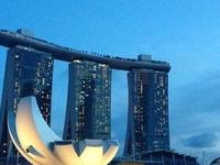 Singapore Super Saver: Night Safari, City Sightseeing and Singapore Flyer