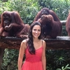 Singapore Super Saver: Morning Zoo Breakfast with Orangutans and Changi Tour