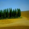 Small group Pienza and Montepulciano tour from Siena