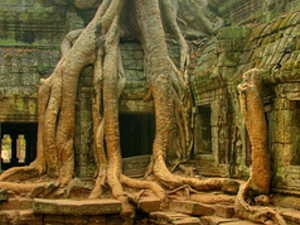 Spend a week soaking up the atmosphere of the many nearby temples Photos