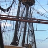 The Pilgrims' adventure in New England