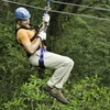 Tranopy: Rainforest Aerial Tram Pacific &  Zip Line Canopy Adventure