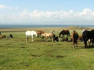 Treking Heavenly Kyrgyzstan Photos