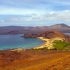 Unforgettable Summer in Galapagos 8d/7n!!! Cruise Tip Top II