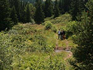 Vitosha Mountains & Cherni Vryh Peak - Tour to Vitosha Photos