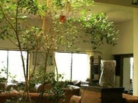 aesthetic farm house +design studio