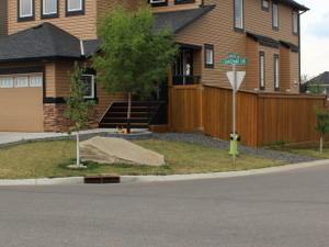 Beautiful home NW Calgary