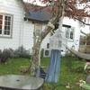 Bird Cottage in quiet Wairarapa