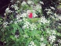 Country living near Newgrange