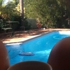 Duncraig paradise