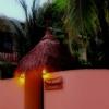Explore Maldives In A Local Way