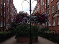 Family in Central London (zone 1)