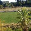 Fantastic home in Christchurch
