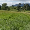 Farm-stay in New Zealand