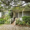 Friendly family home in Box Hill