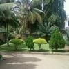 Gardening loving host Nairobi
