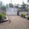 Happy caring hosts Nairobi