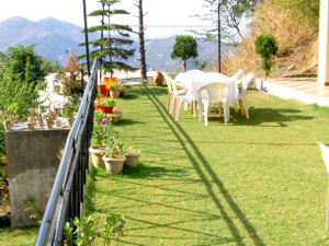 Kasauli friendly host
