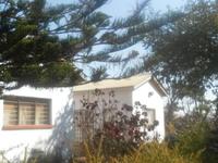 Leafy cosy  homestead  in Lilongwe