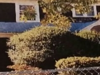 luxurious home away from ho