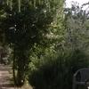 Magica Toscana in nature