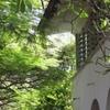 Mombasa's Melting Pot Beach-House !