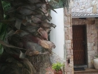 Mzansi Guesthouse close to Sandton