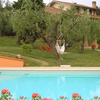 Olivanda ... your home in Tuscany