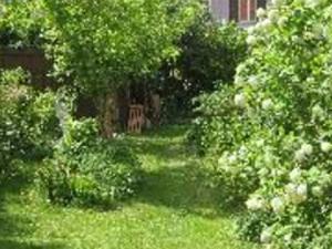 Quiet home loves gardening
