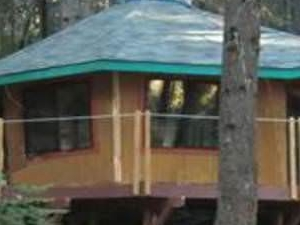 Romantic Getaway in the Forest