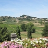 ROOM WITH A VIEW TUSCAN HILLS
