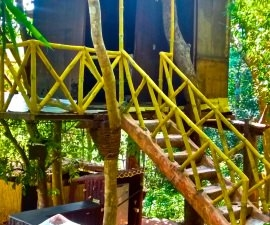 Treehouse getaway with pool Nth Goa