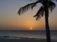 Aruba Harmony