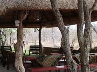 Campfire Safaris