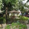 Chitwan Forest Resort