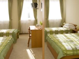 Ferihegy Hotel - Vecses