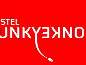 Funky Donkey
