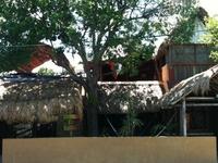 Mayan Hostel Cancun