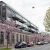 Oslo Hostel/Hotel Apartments