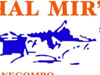 Sachal Mir's